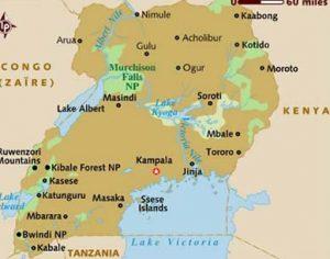 Uganda Safaris-Gorilla trekking