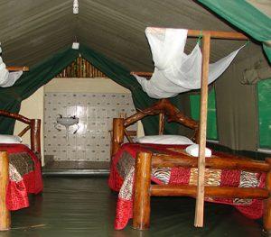 Accommodation at Biwndi Forest
