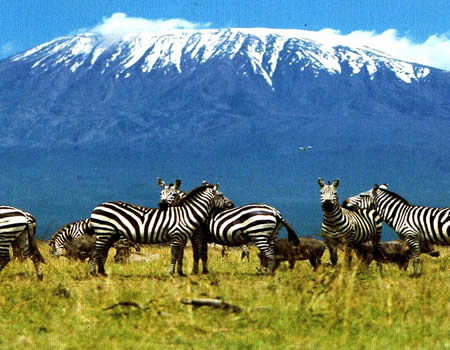 10 Must Visit Places in East Africa