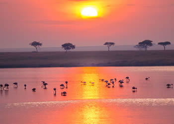10 Top Destinations for Safari in East Africa